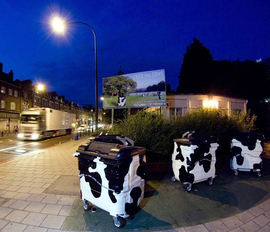 Cowbins-night-shot-press